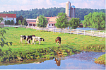 Amish Farm , PA, Postcard