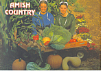 Amish Girls with Farm Produce Postcard cs2265
