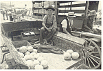 Amish Boy Sells Produce from Farm Wagon Postcard cs2266