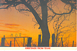 Sunset Waco Texas Postcard cs2352