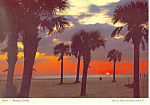 Sunset Sarasota Florida  Postcard cs2385
