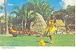 Kodak Hula Show Hawaii Postcard cs2396