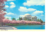 Jefferson Memorial,Washington DC Postcard