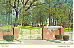 Click here to enlarge image and see more about item cs2456: Gates on Elvis Presley Blvd,Graceland Tennessee Postcar