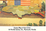 Click here to enlarge image and see more about item cs2482: Florida Cactus Inc Cactus USA Map Postcard