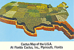 Click here to enlarge image and see more about item cs2483: Florida Cactus Inc Cactus USA Map Postcard