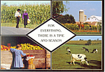 Amish Life in Four Views Postcard