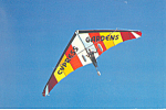 Click here to enlarge image and see more about item cs2634: Delta Wing Kite Cypress Gardens Florida cs2634