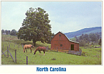 Picturesque Farms North Carolina cs2686