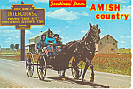 Amish Girls in Buggy, Intercourse,Pennsylvania cs2814