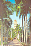 Click here to enlarge image and see more about item cs3175: University of Puerto Rico Rio Piedras,Puerto Rico