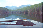 Click here to enlarge image and see more about item cs3209: View of The Dix from Twin Pond Adirondacks New York cs3209