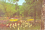 Sterling Forest Gardens Tuxedo New York Postcard cs3230