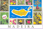 Click here to enlarge image and see more about item cs4113: Maderia Island Portugal Flowers in Bloom cs4113