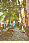 Palm Passage St Thomas US Virgin Islands