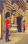 Click here to enlarge image and see more about item cs4272: Sentries Irish Guards on duty Buckingham Palace London England cs4272