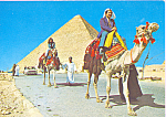 Click here to enlarge image and see more about item cs4438: The Biggest Pyramid of Giza Egypt cs4438