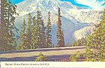 Mount Ranier National Park Washington cs4503