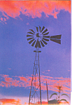 Windmill Postcard cs4625