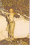 Click here to enlarge image and see more about item cs4646: Eve Picking Fruit From Forbidden Tree Postcard cs4646