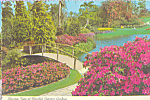 Click here to enlarge image and see more about item cs4659: Blossom Time at Cypress Gardens cs4659