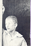 Photo of Young Boy Postcard cs4682