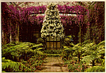 Click here to enlarge image and see more about item cs4809: Chandelier of Petunias Longwood Gardens PA cs4809
