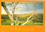 Click here to enlarge image and see more about item cs4878: Big Indian Gorge Oregon cs4878