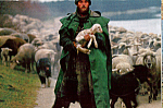 Click here to enlarge image and see more about item cs4946: Shepherd with Lamb