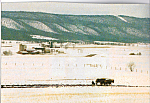 Amish Farm in Winter Postcard cs4956