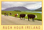 Click here to enlarge image and see more about item cs5112: Rush Hour Ireland Postcard cs5112