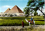 Click here to enlarge image and see more about item cs5152: The Pyramids of Giza Egypt cs5152