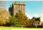 Click here to enlarge image and see more about item cs5292: Blarney Castle, Co. Cork Ireland