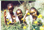 Click here to enlarge image and see more about item cs5301: Sponsored Children of Ethiopa