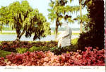 Click here to enlarge image and see more about item cs5404: Middleton Place Gardens Charleston South Carolina cs5404