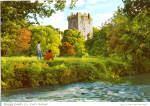 Click here to enlarge image and see more about item cs5419: Blarney Castle Ireland Postcard cs5419