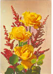 Still Life of Yellow Roses Postcard cs5459