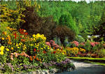 Click here to enlarge image and see more about item cs5642: The Butchart Gardens Victori, British Columbia cs5642