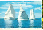 Click here to enlarge image and see more about item cs5645: Icebergs,St John's,Newfoundland, Canada