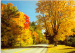 Click here to enlarge image and see more about item cs5659: Golds and Reds on a New England Road cs5659