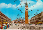 St Mark Square, The Pigeons, Venice , Italy