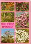 Click here to enlarge image and see more about item cs6121: Blue Ridge Parkway