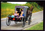 Click here to enlarge image and see more about item cs6146: Amish Pickup Buggy ostcard cs6146