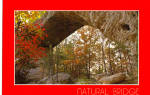 Click here to enlarge image and see more about item cs6331: Natural Rock Bridge Daniel Boone National Forest cs6331