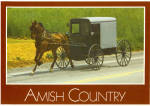 Amish Family Carriage Postcard cs6480