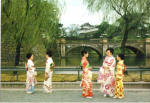 Click here to enlarge image and see more about item cs6596: Nijyubashi Double Bridge Japanese Native Costumes cs6596