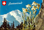 Click here to enlarge image and see more about item cs6618: Die Jungfrau, Switzerland