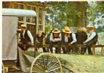 Click here to enlarge image and see more about item cs6768: Amish Men at a Sunday Meeting