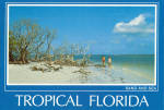Click here to enlarge image and see more about item cs6781: Sand and Sea,Florida