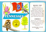 Tennessee State Symbols and State Song cs6785